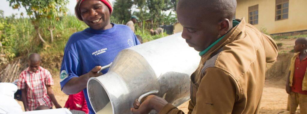 Rwanda Dairy