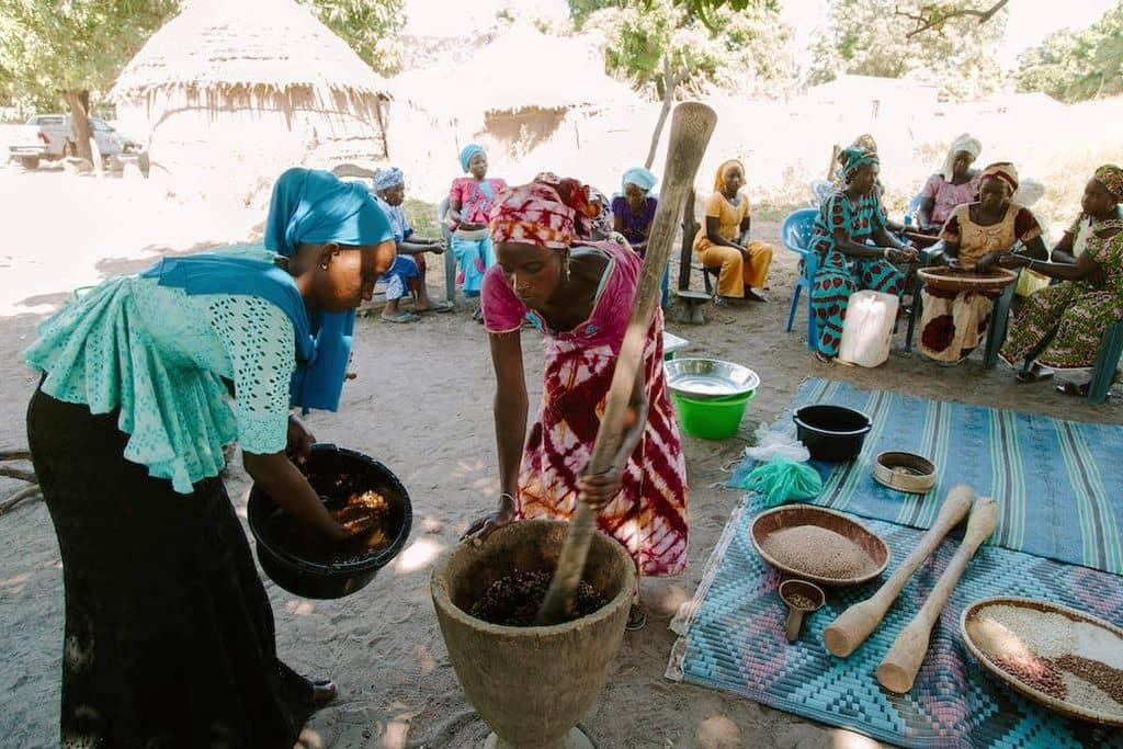 Senegal ondervoeding Heifer