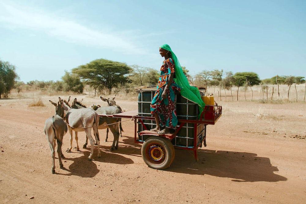 Senegal waterkar