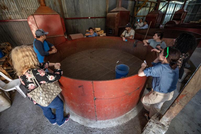 Kardemom droger Guatemala